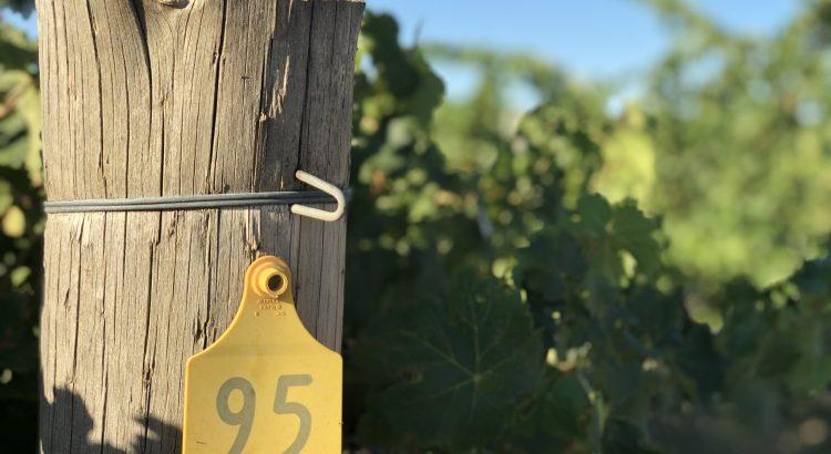 Vineyard post